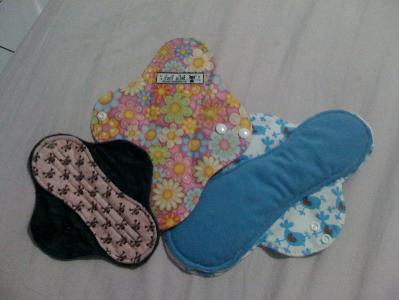 Pantyliner (Sugarliners from Tiny Tapir), Regular pad (Bellaposh from Little Haven), Luna pad (Bellaposh from Little Haven)